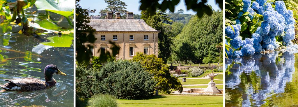 Gardens in Cornwall for families